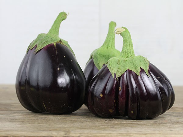 'Black Beauty', Aubergine