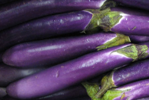 Thai Long Purple, Aubergine