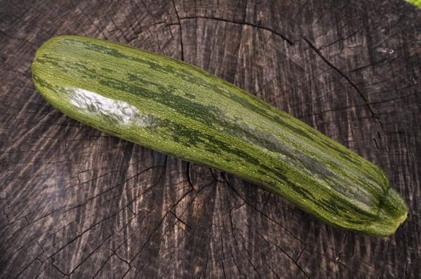 Nimba, Zucchini
