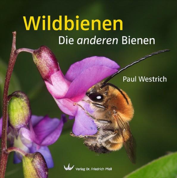 Wildbienen-Die anderen Bienen