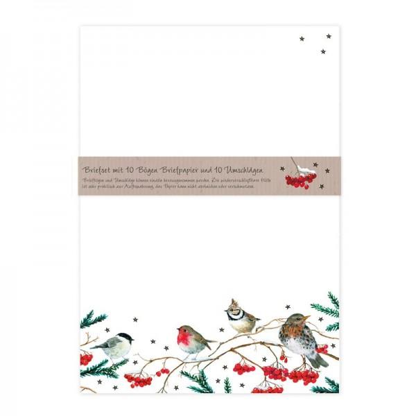 Briefset Wintervögel