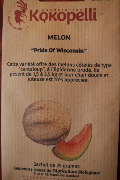Honigmelone Pride of Wisconsin