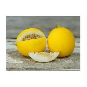 Honigmelone Mango
