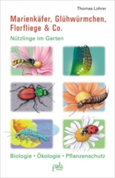 Marienkäfer, Glühwürmchen, Florfliege &Co.