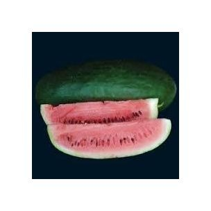 Wassermelone Tom Watson