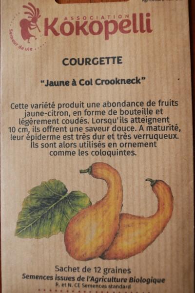 Yellow Crookneck / Gelber Krummhhals, Zucchini