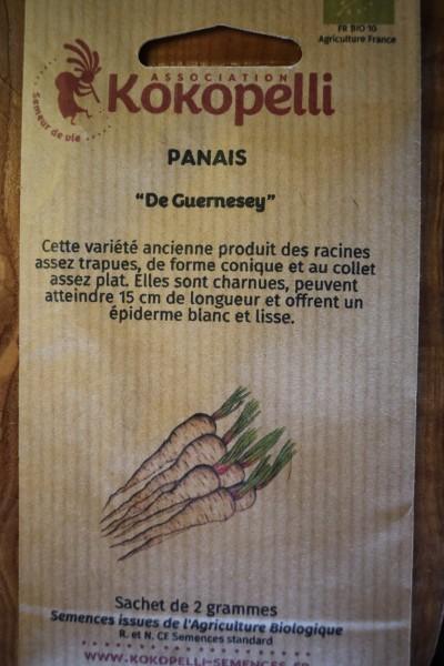 Pastinake De Guernesey