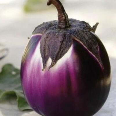 Aubergine Round Purple