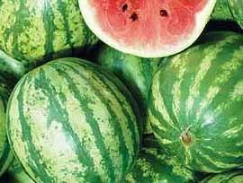 Mischung vieler Sorten, Wassermelonen