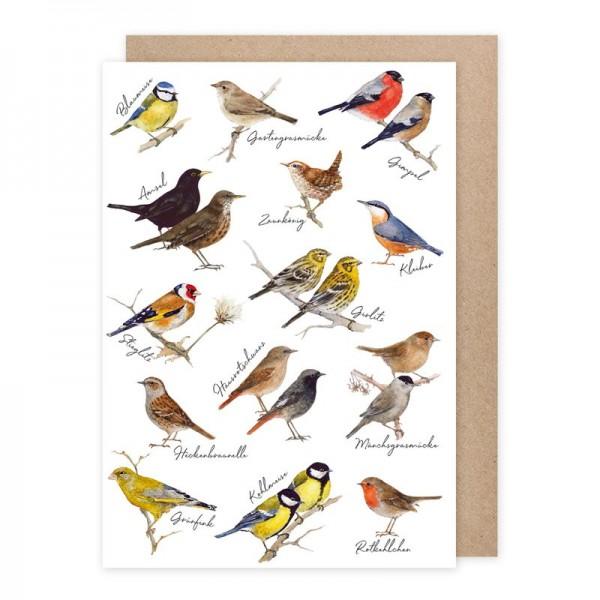 Doppelkarte-Gartenvögel