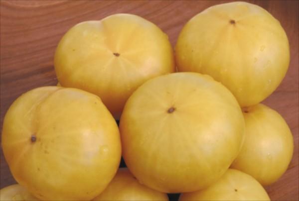 'Bianca Cherry' – Weiße Obsttomate